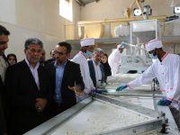 راه اندازی خط تولید قند کله پرسی و قند خرد کنی | شهرستان میناب استان هرمزگان